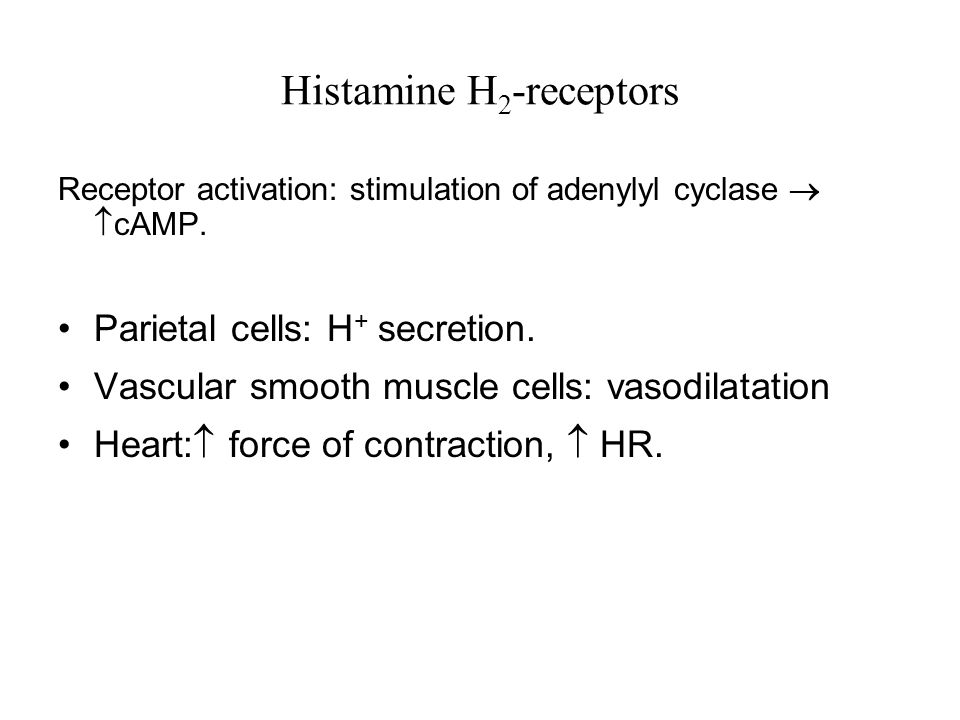 Histamine H 2 -receptors Receptor activation: stimulation of adenylyl cyclase   cAMP.