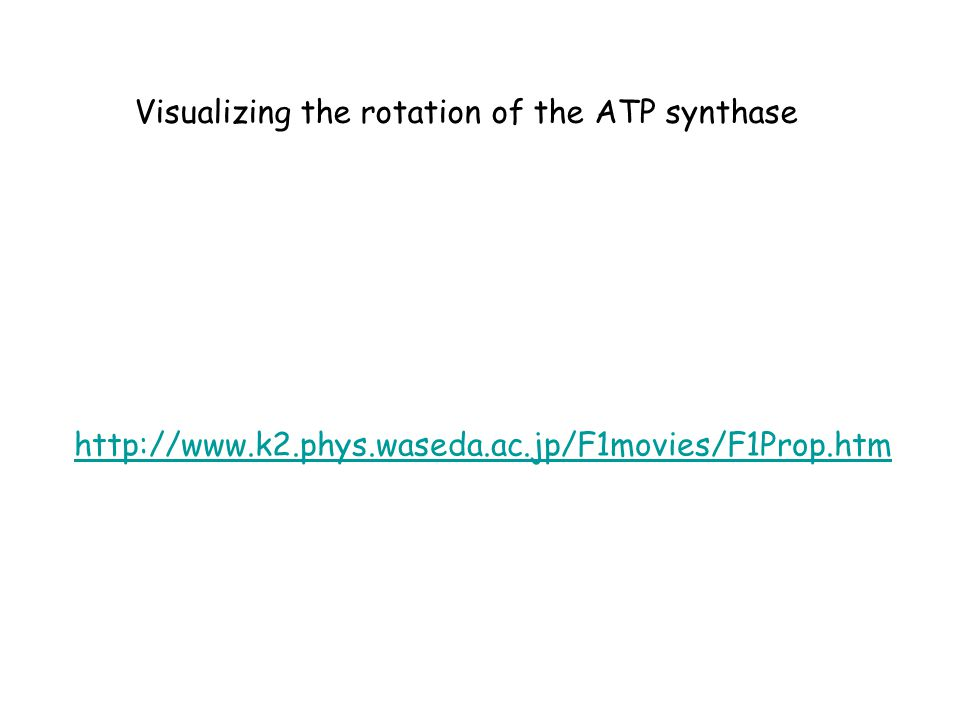 http://www.k2.phys.waseda.ac.jp/F1movies/F1Prop.htm Visualizing the rotation of the ATP synthase