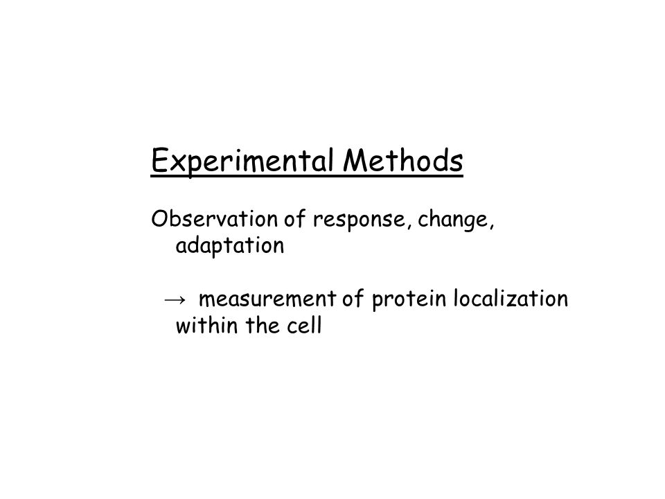 Experimental Methods Observation of response, change, adaptation → measurement of protein localization within the cell