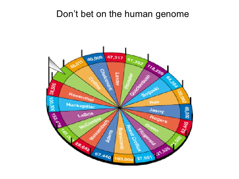 Don't bet on the human genome