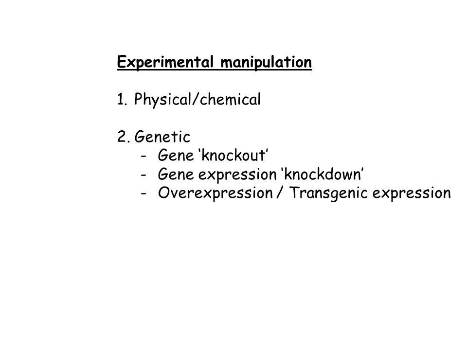 Experimental manipulation 1.Physical/chemical 2.Genetic -Gene 'knockout' -Gene expression 'knockdown' -Overexpression / Transgenic expression