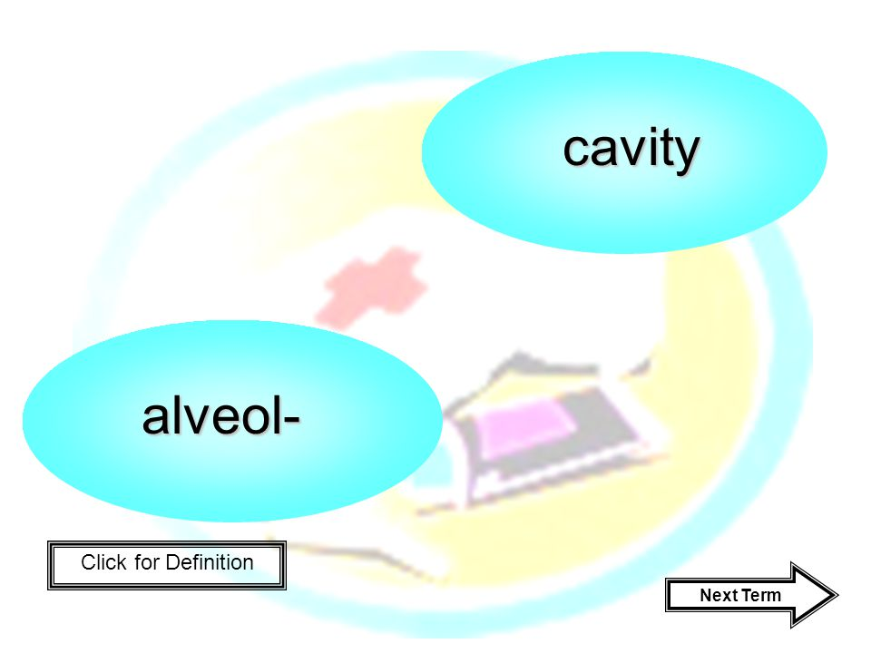 Click for Definition alveol- cavity Next Term