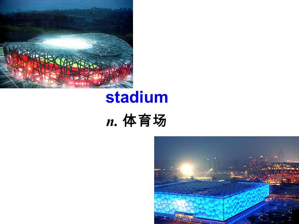 stadium n. 体育场