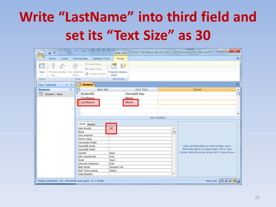 Write LastName into third field and set its Text Size as 30 25