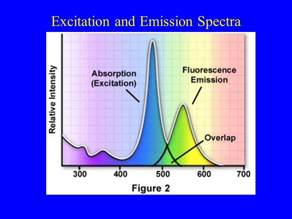 Choose Wide- Band Emission Filters for Single Fluorophore to Maximize Sensitivity