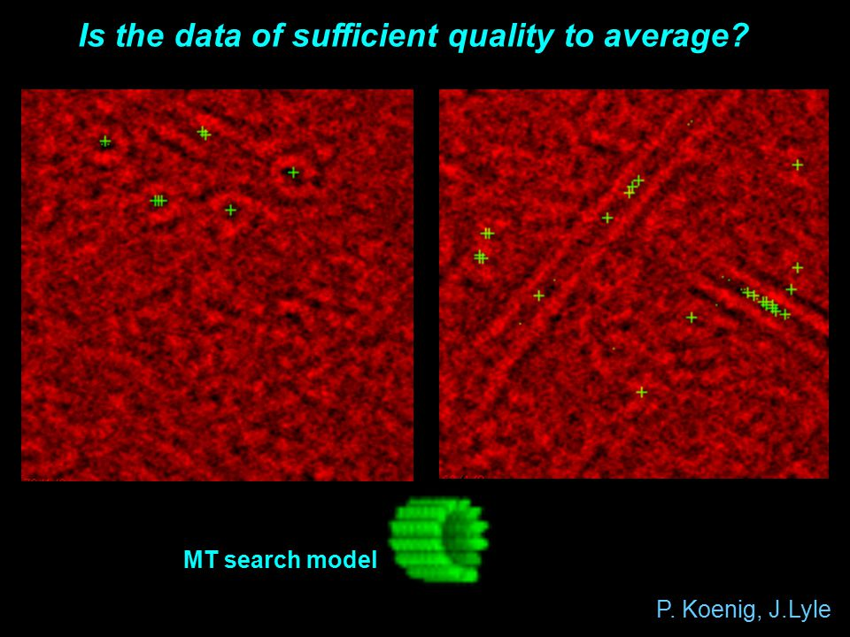 P. Koenig, J.Lyle Is the data of sufficient quality to average MT search model