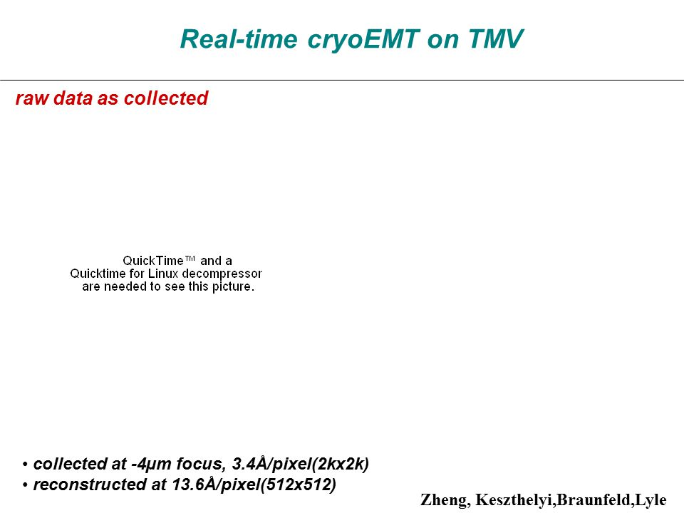 Real-time cryoEMT on TMV collected at -4µm focus, 3.4Å/pixel(2kx2k) reconstructed at 13.6Å/pixel(512x512) raw data as collected Zheng, Keszthelyi,Braunfeld,Lyle