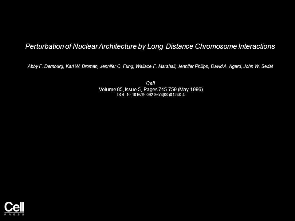 Perturbation of Nuclear Architecture by Long-Distance Chromosome Interactions Abby F.