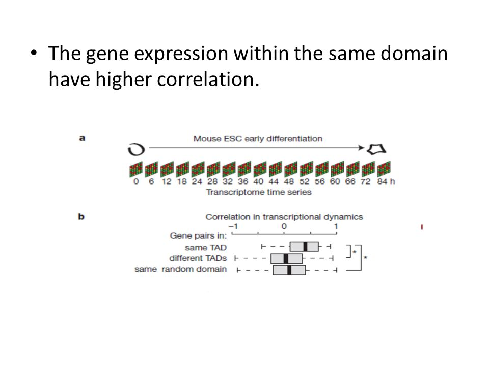 The gene expression within the same domain have higher correlation.