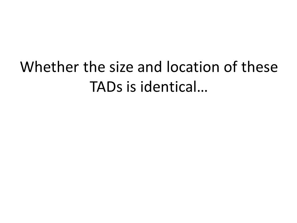 Whether the size and location of these TADs is identical…