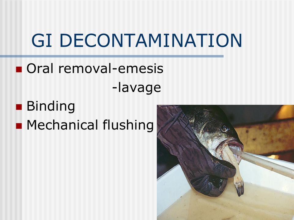 GI DECONTAMINATION Oral removal-emesis -lavage Binding Mechanical flushing