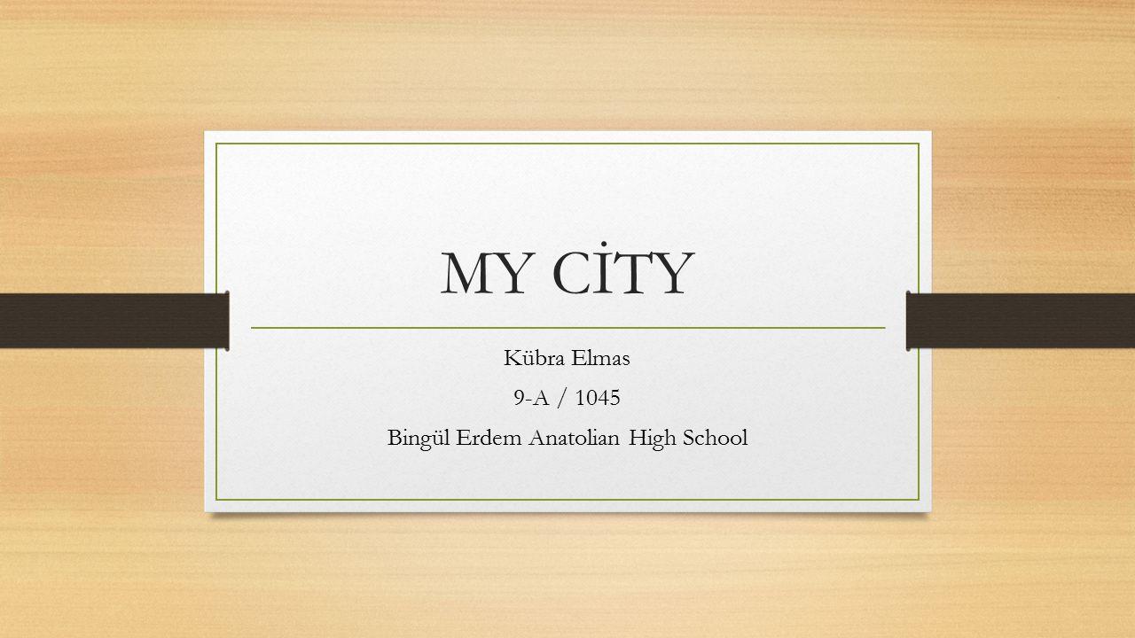 MY CİTY Kübra Elmas 9-A / 1045 Bingül Erdem Anatolian High School