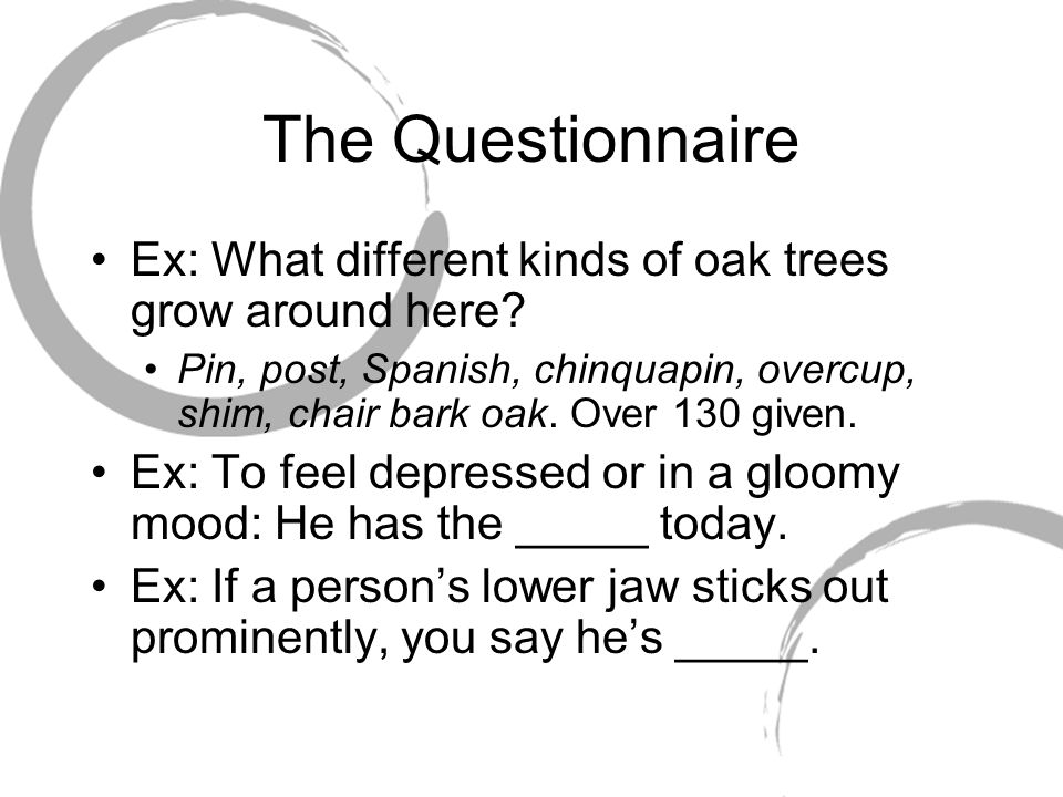 The Questionnaire Ex: What different kinds of oak trees grow around here.
