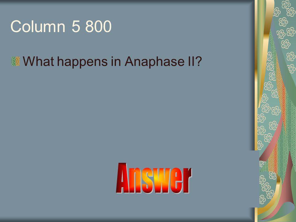 Answer Prophase I