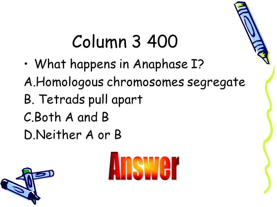 Answer B. Reproductive Organs