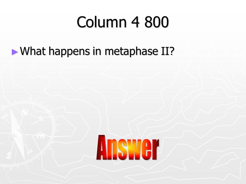 Answer ►C►C►C►C