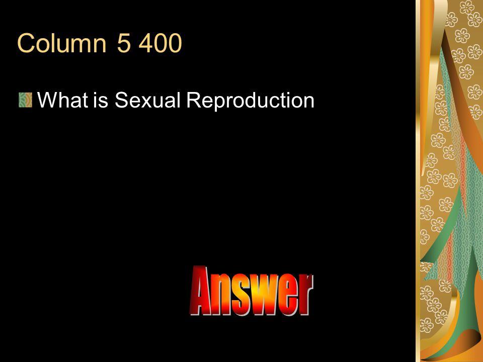 Answer A.