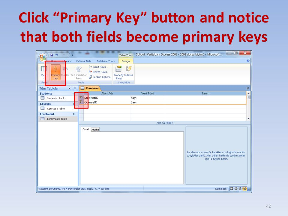 Click Primary Key button and notice that both fields become primary keys 42