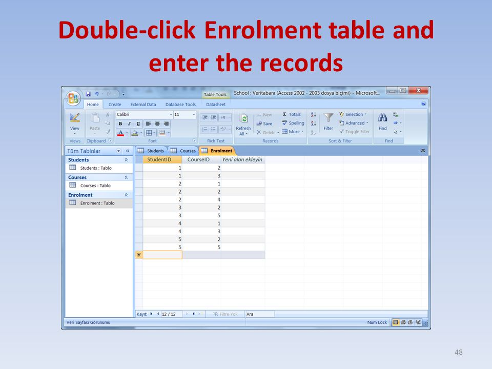 Double-click Enrolment table and enter the records 48