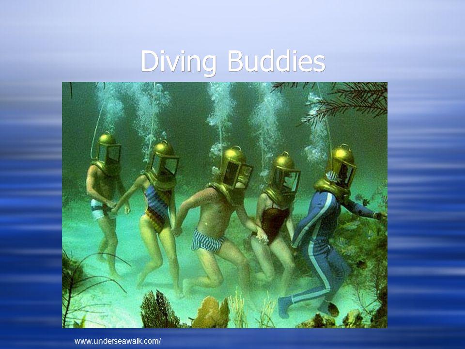 Diving Buddies www.underseawalk.com/
