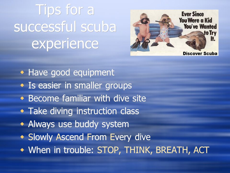 Tips for a successful scuba experience  Have good equipment  Is easier in smaller groups  Become familiar with dive site  Take diving instruction