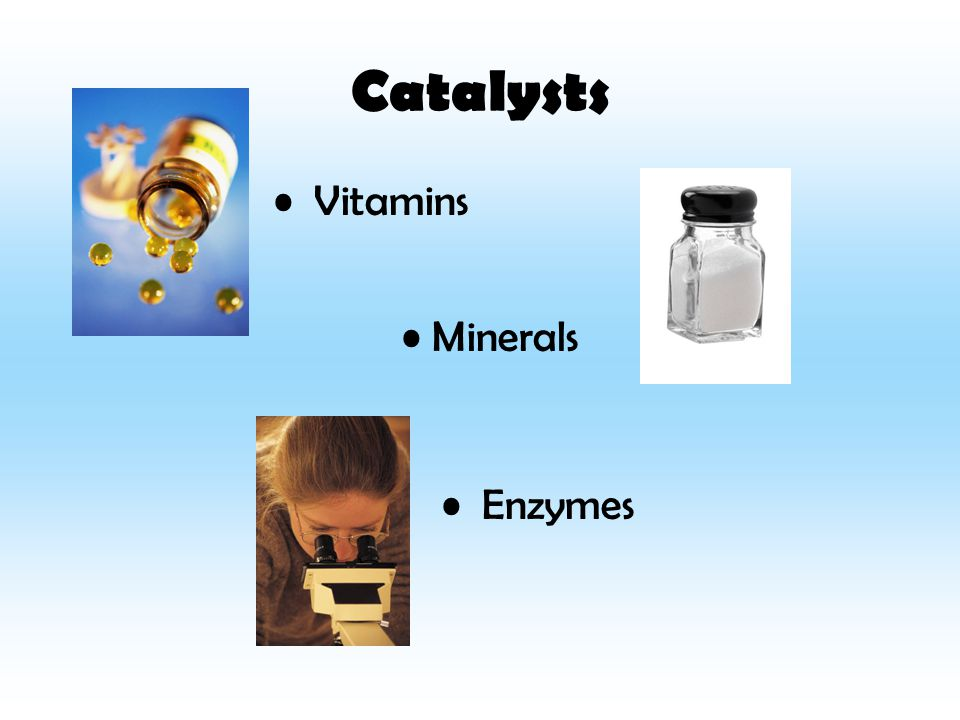 Catalysts Vitamins Minerals Enzymes