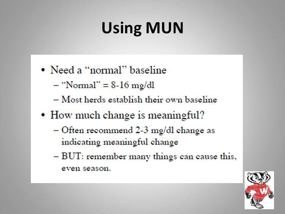 Using MUN