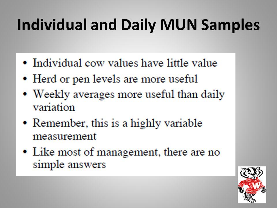 Individual and Daily MUN Samples
