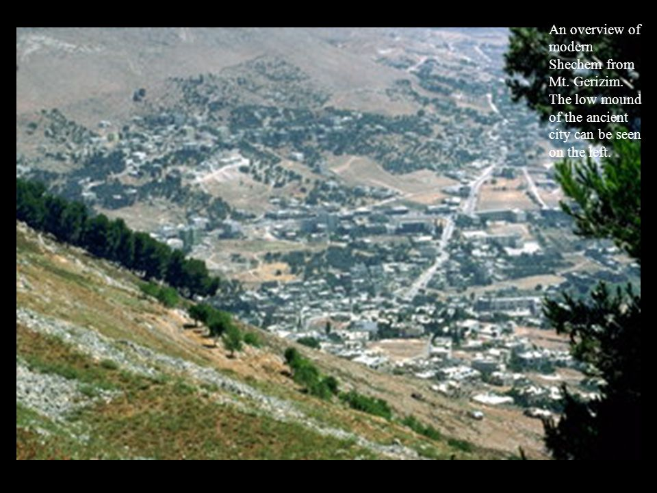 An overview of modern Shechem from Mt. Gerizim.