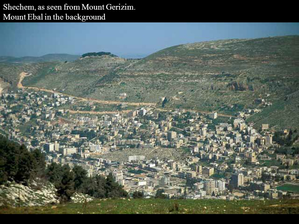 Shechem, as seen from Mount Gerizim. Mount Ebal in the background