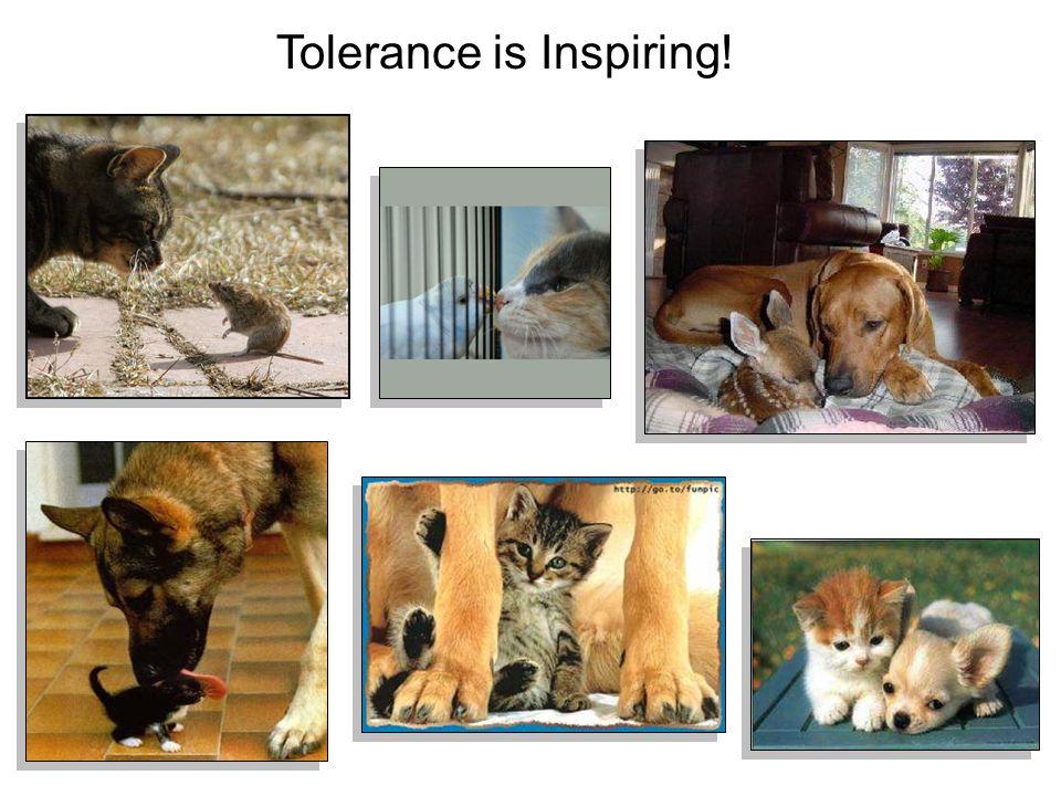 Tolerance is Inspiring!