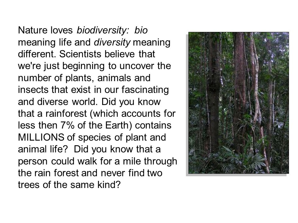 Nature loves biodiversity: bio meaning life and diversity meaning different.