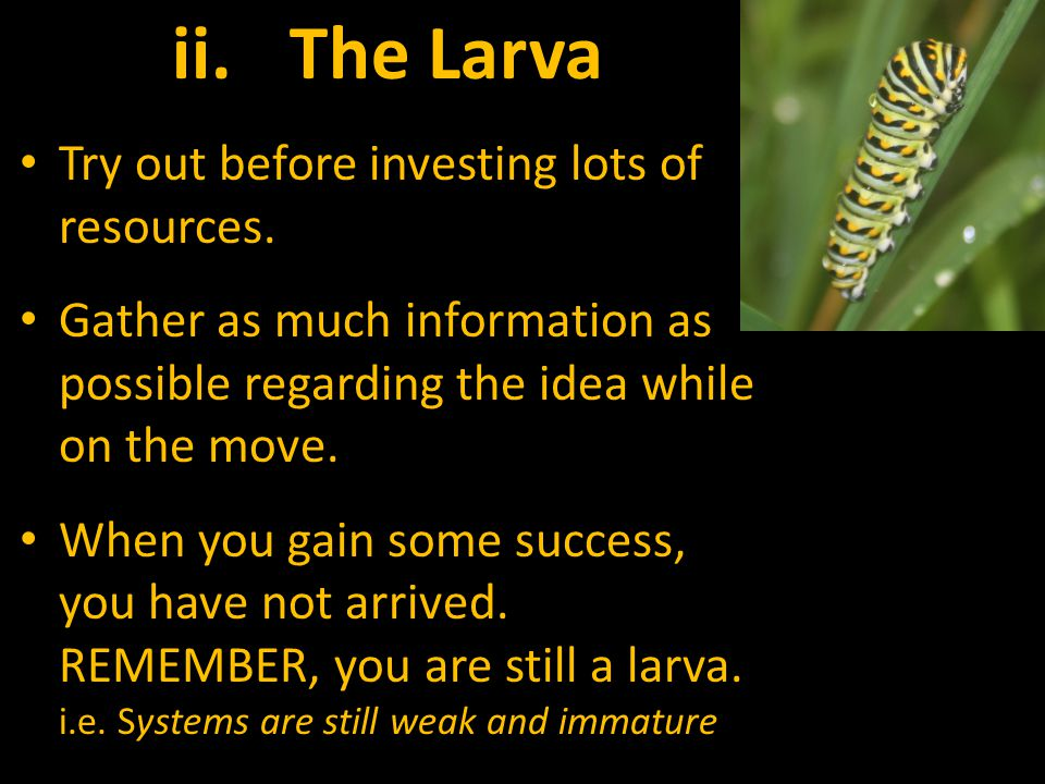 ii.The Larva Try out before investing lots of resources.