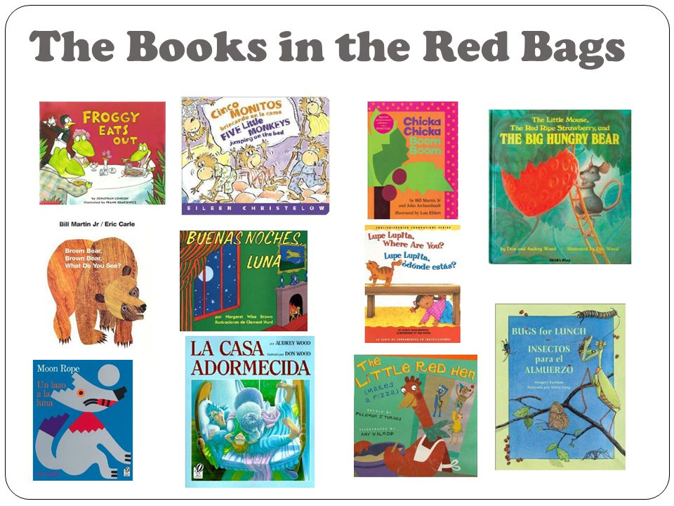 The Books in the Red Bags