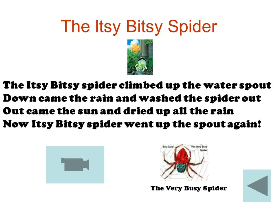 The Itsy Bitsy Spider The Itsy Bitsy spider climbed up the water spout Down came the rain and washed the spider out Out came the sun and dried up all