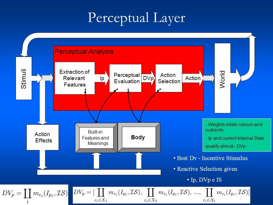 Perceptual Layer Action Effects All data is stored in memory, including: The action effects on Internal State are used to adapt (temporarily or not) the meaning functions from which results the DVp.