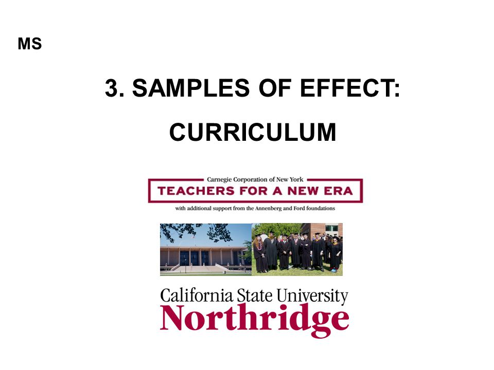 3. SAMPLES OF EFFECT: CURRICULUM MS