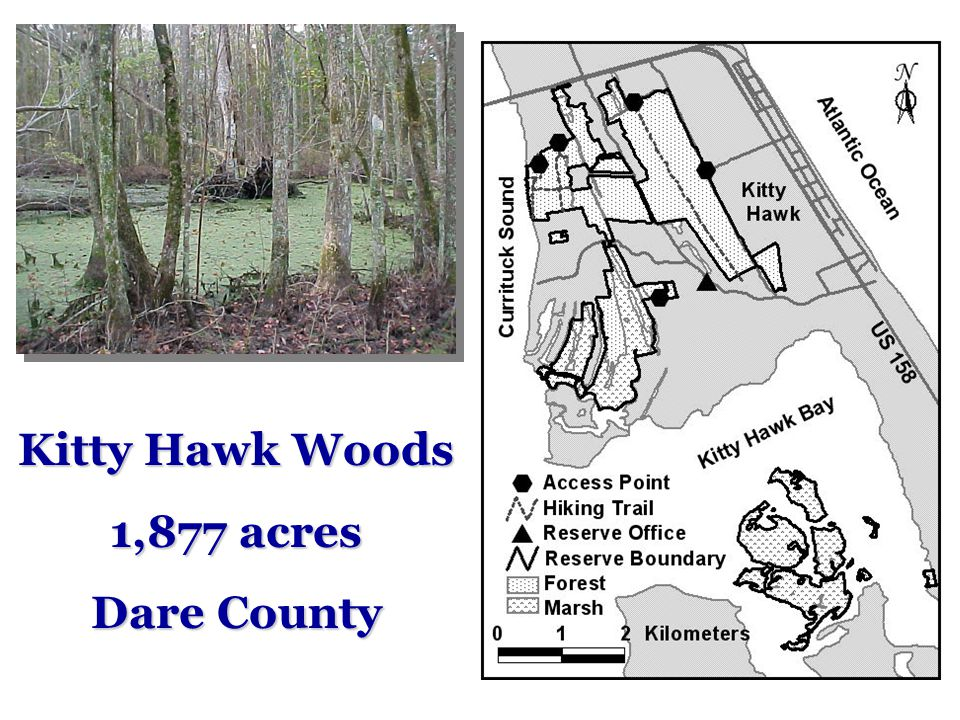 Kitty Hawk Woods 1,877 acres Dare County