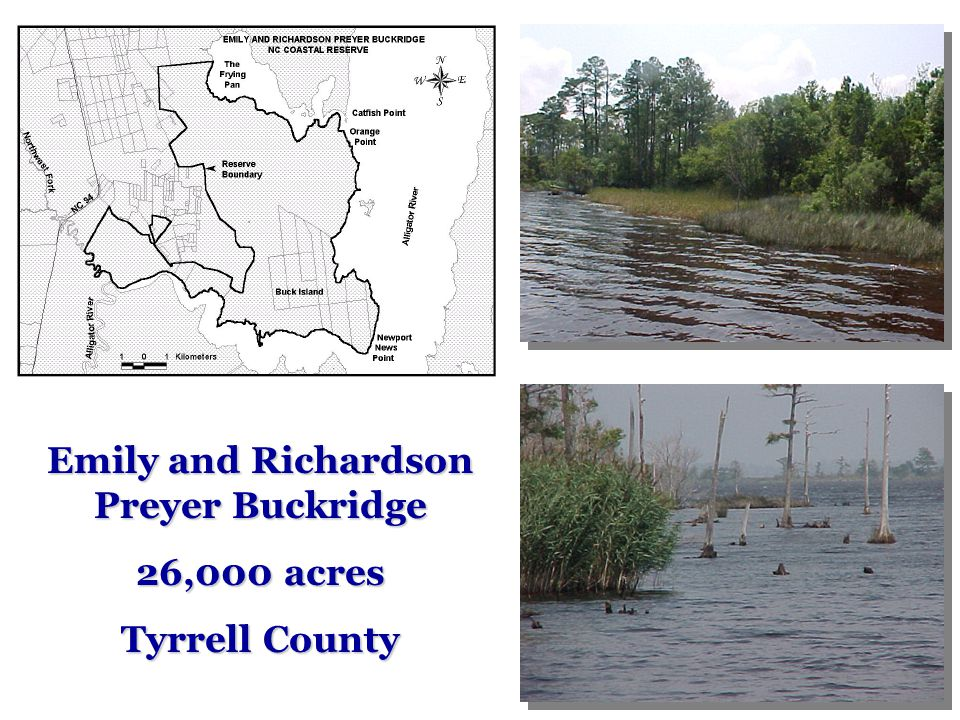 Emily and Richardson Preyer Buckridge 26,000 acres Tyrrell County