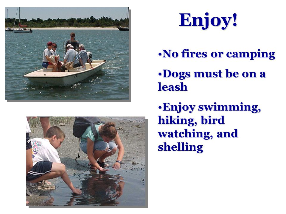 Enjoy! No fires or campingNo fires or camping Dogs must be on a leashDogs must be on a leash Enjoy swimming, hiking, bird watching, and shellingEnjoy