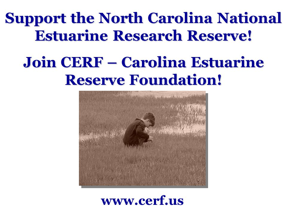 Support the North Carolina National Estuarine Research Reserve.
