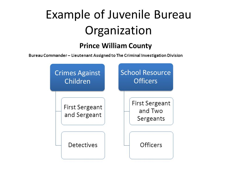 Juvenile Record Keeping – Files involving youth crime and arrest records must be stored in an area that is maintained separately from adult files.