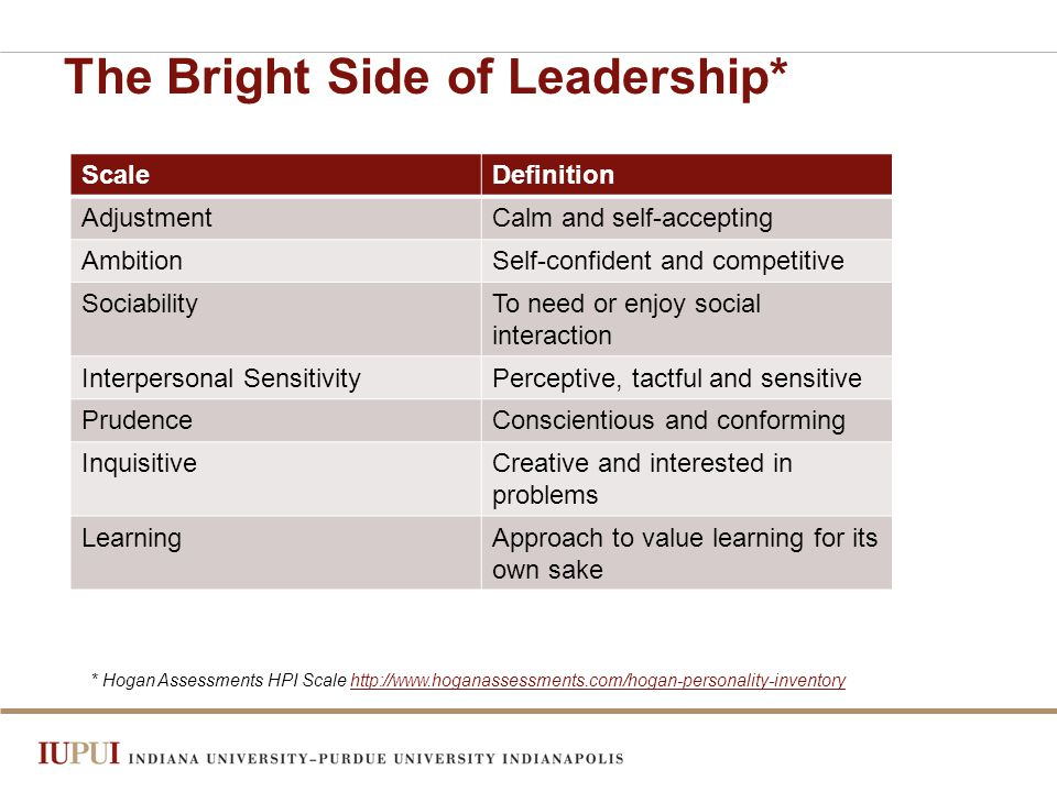 The Bright Side of Leadership* ScaleDefinition AdjustmentCalm and self-accepting AmbitionSelf-confident and competitive SociabilityTo need or enjoy social interaction Interpersonal SensitivityPerceptive, tactful and sensitive PrudenceConscientious and conforming InquisitiveCreative and interested in problems LearningApproach to value learning for its own sake * Hogan Assessments HPI Scale http://www.hoganassessments.com/hogan-personality-inventoryhttp://www.hoganassessments.com/hogan-personality-inventory