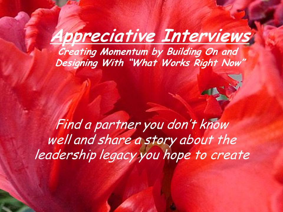 Appreciative Interviews Creating Momentum by Building On and Designing With What Works Right Now Find a partner you don't know well and share a story about the leadership legacy you hope to create