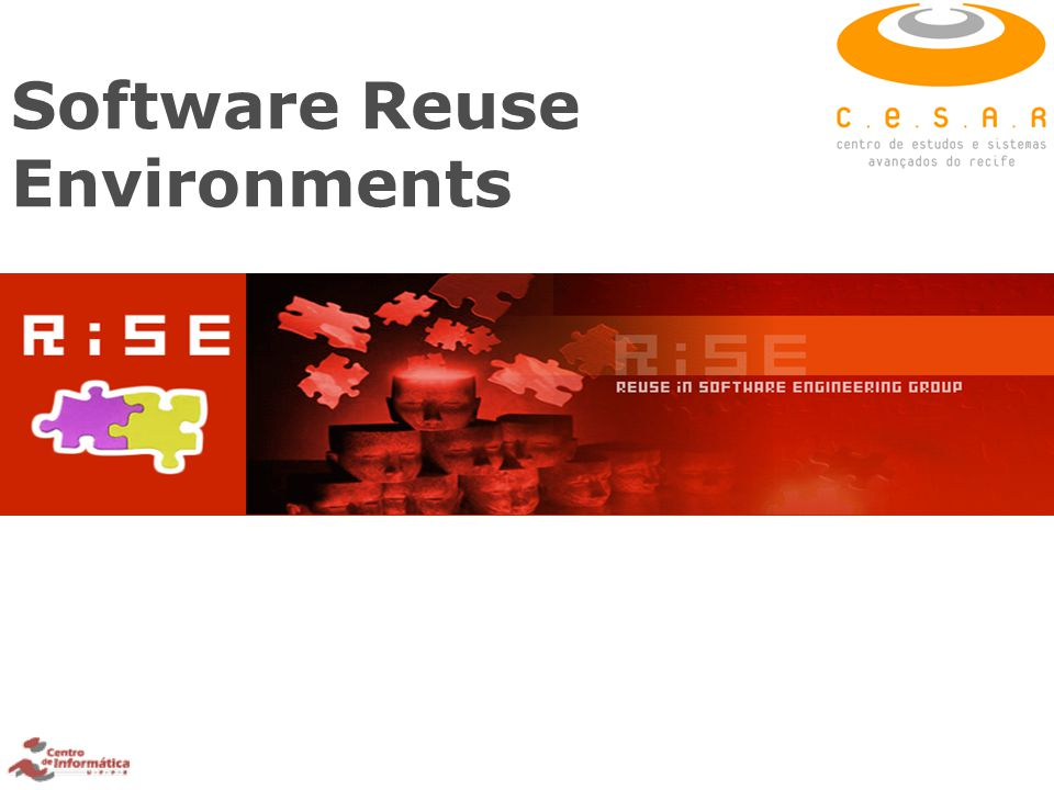 Software Reuse Environments