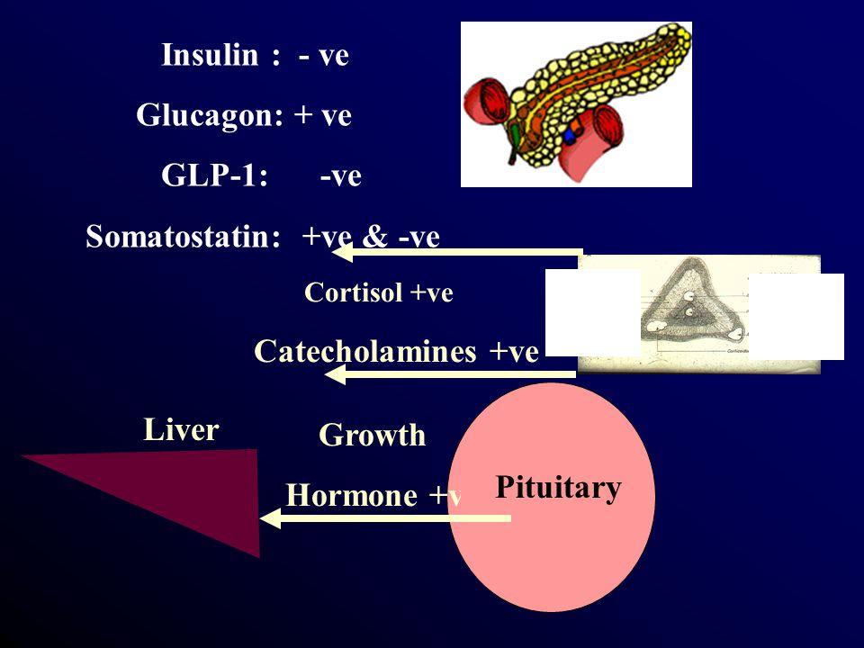 Insulin : - ve Glucagon: + ve GLP-1: -ve Somatostatin: +ve & -ve Growth Hormone +ve Pituitary Liver Cortisol +ve Catecholamines +ve