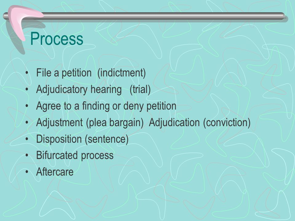 Process File a petition (indictment) Adjudicatory hearing (trial) Agree to a finding or deny petition Adjustment (plea bargain) Adjudication (convicti