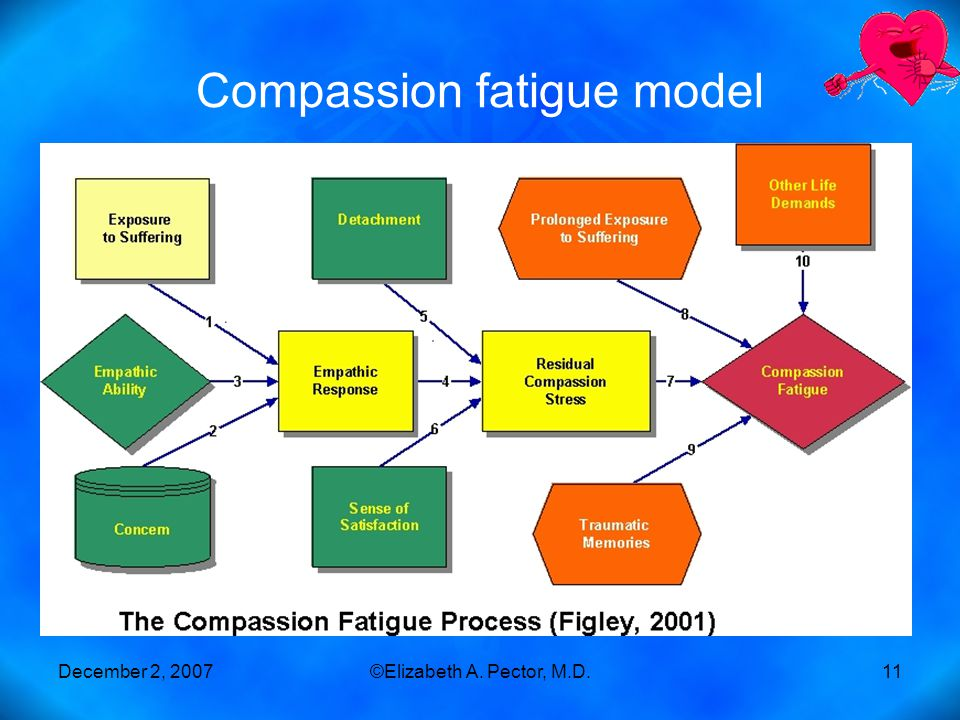 December 2, 2007©Elizabeth A. Pector, M.D.11 Compassion fatigue model