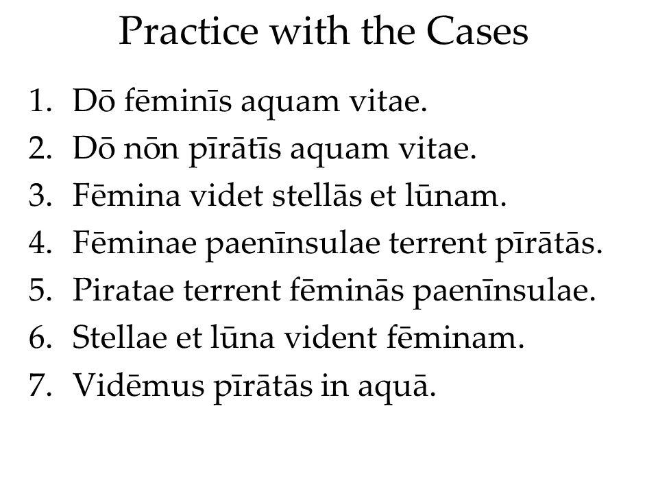 Practice with the Cases 1.Dō fēminīs aquam vitae. 2.Dō nōn pīrātīs aquam vitae.