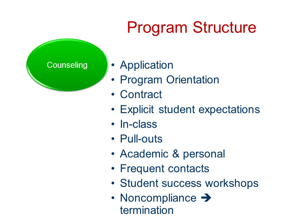 Program Structure Application Program Orientation Contract Explicit student expectations In-class Pull-outs Academic & personal Frequent contacts Student success workshops Noncompliance  termination Counseling